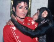Michael Jackson with his chimp