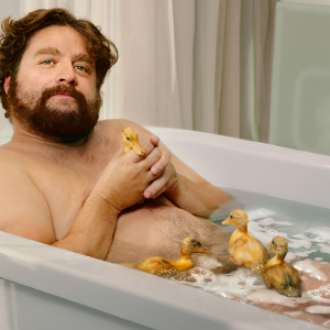 Zach Galifianakis Lifestyle on Richfiles