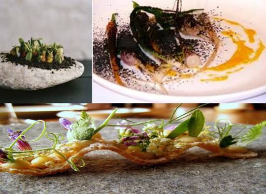 Noma's exotic dishes