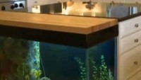 Aquarium in the kitchen