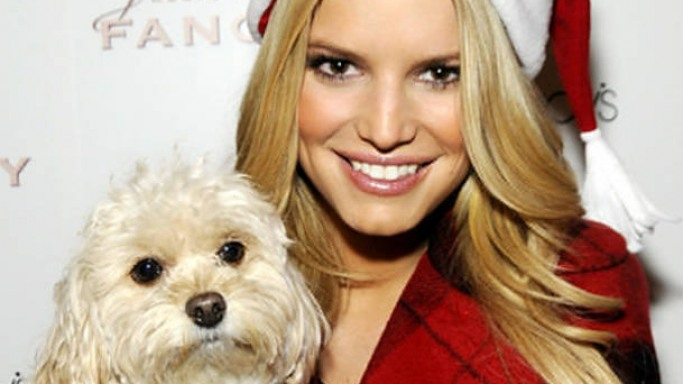 Photo of Jessica Simpson & her Dog Daisy